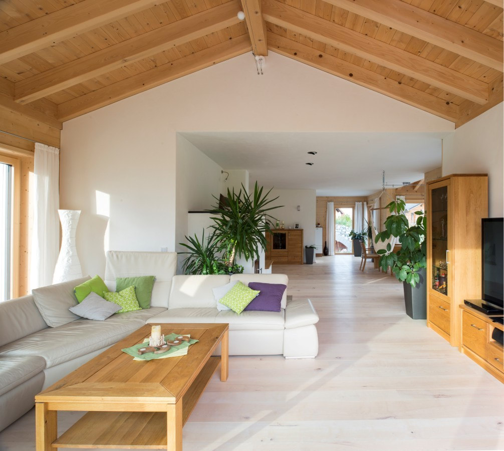 Holz100 - An Energy Efficient Wood Home